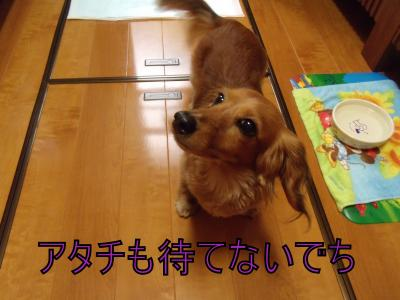 繝・ず繧ォ繝。+831_convert_20100523221310