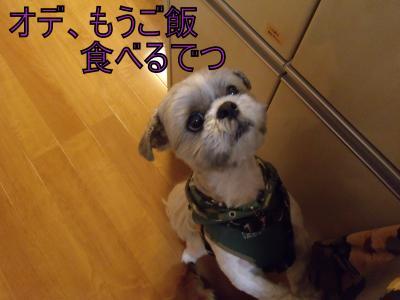 繝・ず繧ォ繝。+833_convert_20100523221445