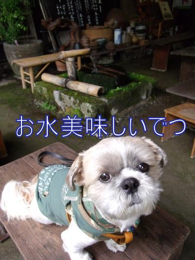 繝・ず繧ォ繝。+869_convert_20100526213252