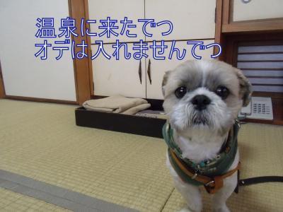 繝・ず繧ォ繝。+849_convert_20100528125935