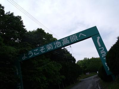 繝・ず繧ォ繝。+847_convert_20100529225638