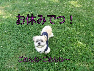 繝・ず繧ォ繝。+740_convert_20100603171311