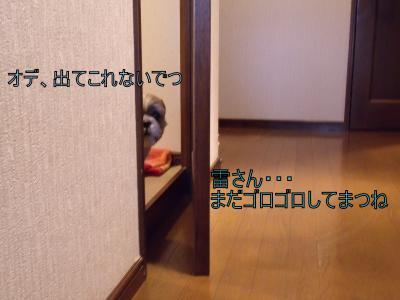 繝・ず繧ォ繝。+909_convert_20100604211145