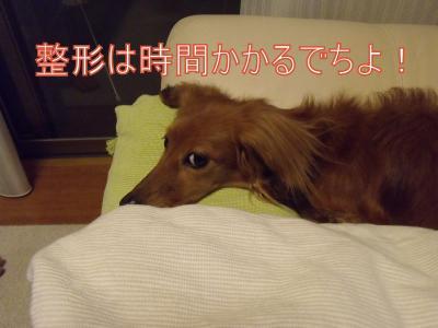繝・ず繧ォ繝。+889_convert_20100531001400