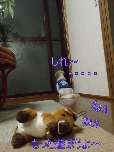 繝・ず繧ォ繝。+949_convert_20100613225019