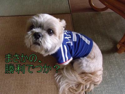 繝・ず繧ォ繝。+968_convert_20100615151026