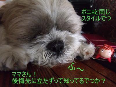 繝・ず繧ォ繝。+970_convert_20100619005100