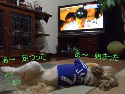 繝・ず繧ォ繝。+980-1_convert_20100619213754