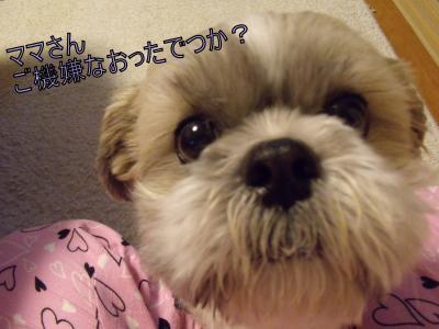 繝・ず繧ォ繝。+656_convert_20100620232604