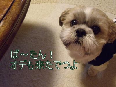 繝・ず繧ォ繝。+654_convert_20100711004406