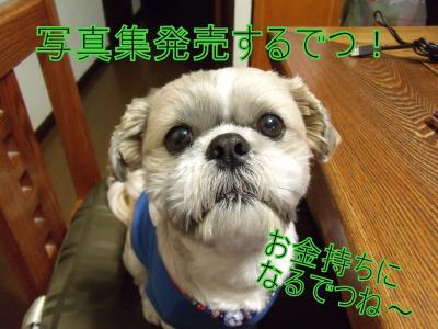 繝・ず繧ォ繝。+262_convert_20100712213427