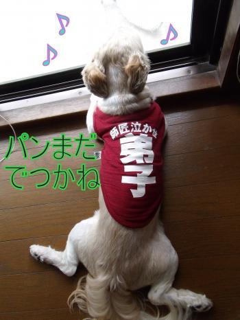 繝・ず繧ォ繝。+994_convert_20100716004704