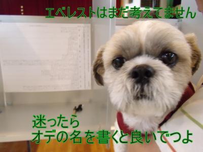 繝・ず繧ォ繝。+1021_convert_20100716004829