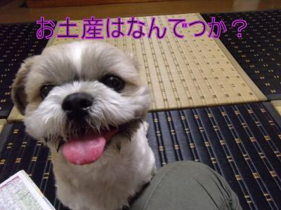 繝・ず繧ォ繝。+1114_convert_20100801015739