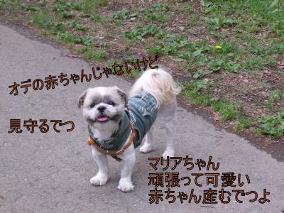 繝・ず繧ォ繝。+843_convert_20100814005223