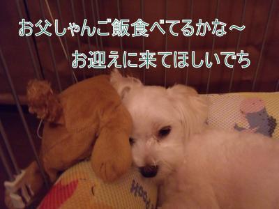 繝・ず繧ォ繝。+1221_convert_20100825213013