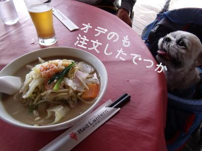 ・搾シ魯SCF5966_convert_20101016003332