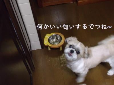 ・搾シ倥ョ繧ク繧ォ繝。+624_convert_20101024233623