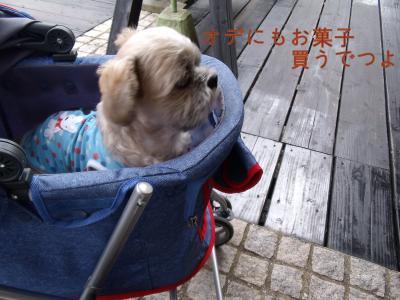 ・搾シ縫SCF6151_convert_20101031201525