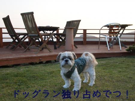 ・搾シ姫B070027_convert_20101114021722