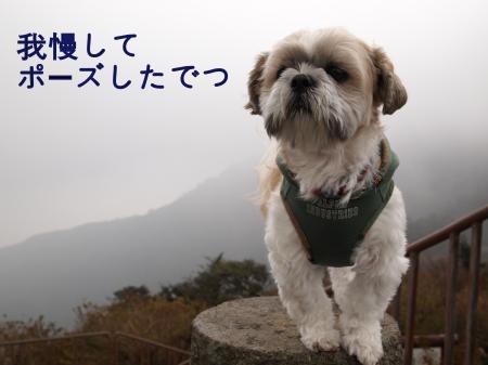 ・搾シ姫B080125_convert_20101118154433