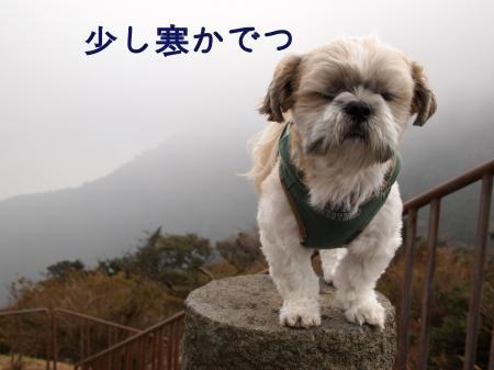 ・搾シ鳳B080126_convert_20101118154505