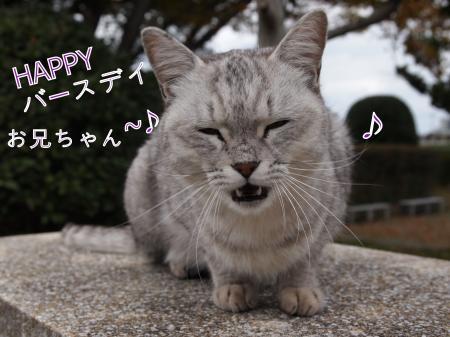 ・搾シ姫B230300_convert_20101125023003