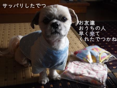 ・搾シ假シ搾シ儕B280336_convert_20101130033513
