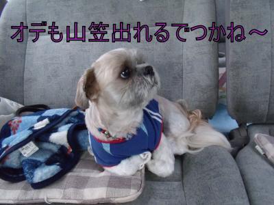 DSCF4917_convert_20100709014114.jpg