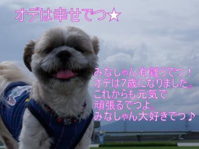DSCF5074_convert_20100720010947.jpg
