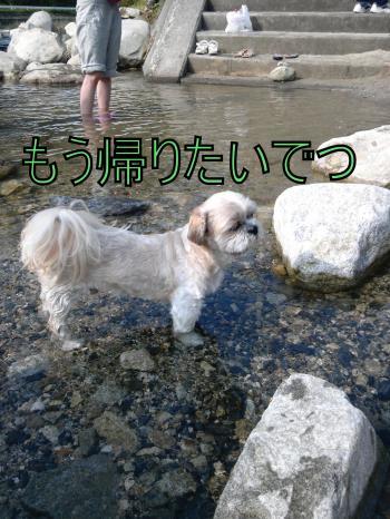 DVC00208_convert_20100803222203.jpg
