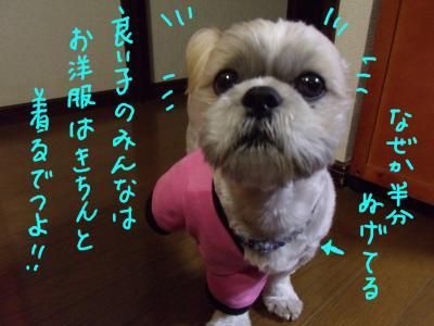 kaiimeiji4_convert_20100223030518.jpg