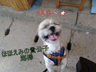 kawaba6.jpg