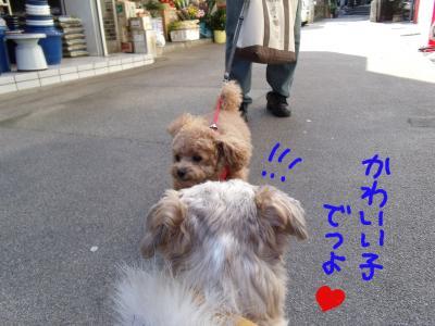 nagasora.jpg