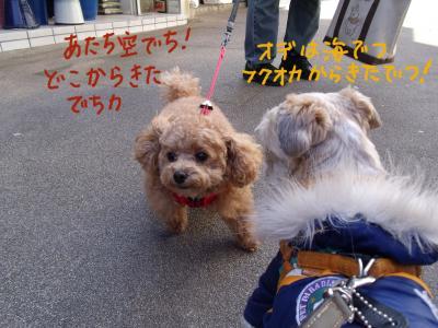 nagasora2.jpg