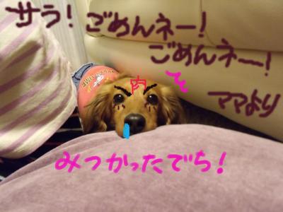 saraimeiji1_convert_20100217235758_convert_20100310004158.jpg