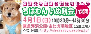 shounan20120401_320x120.jpg