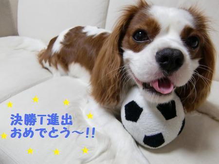 ワールドカップ☆