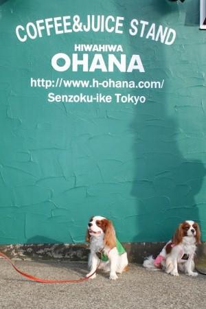 HIWAHIWA OHANA♪