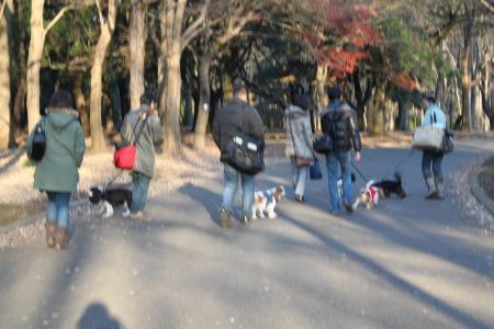 代々木公園☆