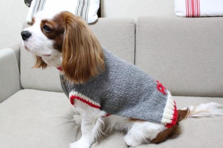 みふゆさんセーター☆