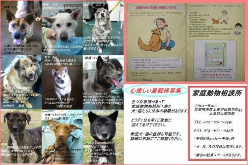 201110433+012cryy_convert_20120320004544.jpg