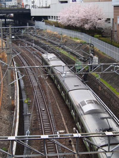 写真 JR池袋西口付近風景 桜と電車