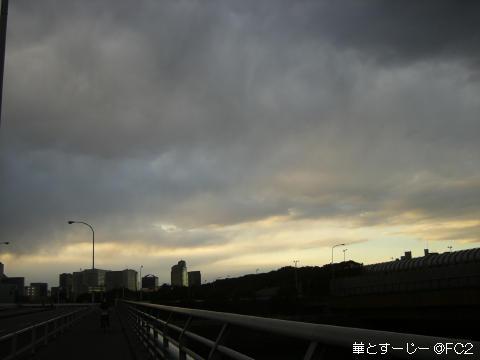 20110127_1.jpg
