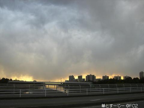 20110127_2.jpg