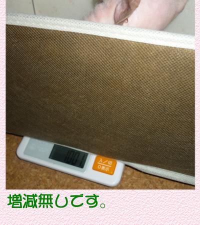 体重測定3
