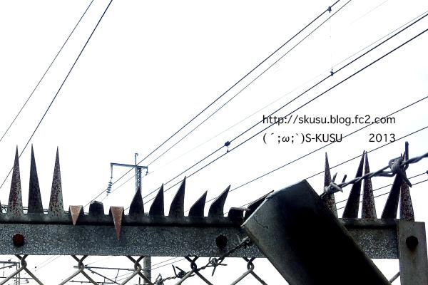 DSC_0259のコピー