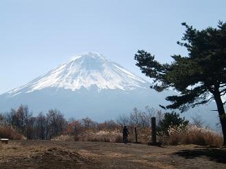 富士山もバッチリ!