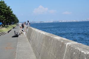 防波堤釣りロード