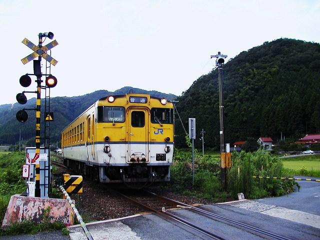 006-shinome.jpg